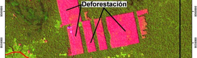 Satellite image of Tamshiyacu after oil palm deforestation