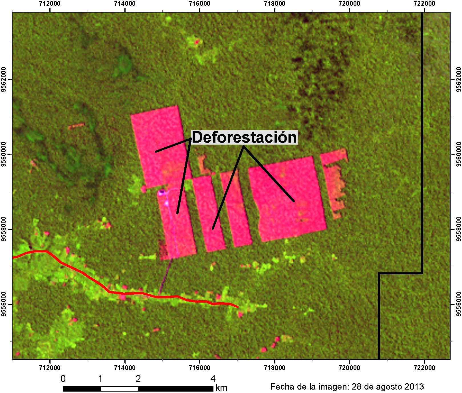 Satellite image of Tamshiyacu after oil palm deforestation
