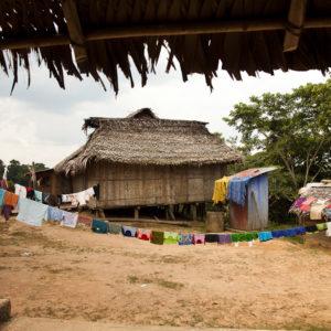 Matsés village view from inside hut Alicia Fox Photography