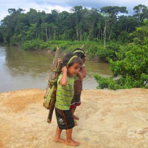 Matsés boy carrying firewood. Photo by David Fleck.