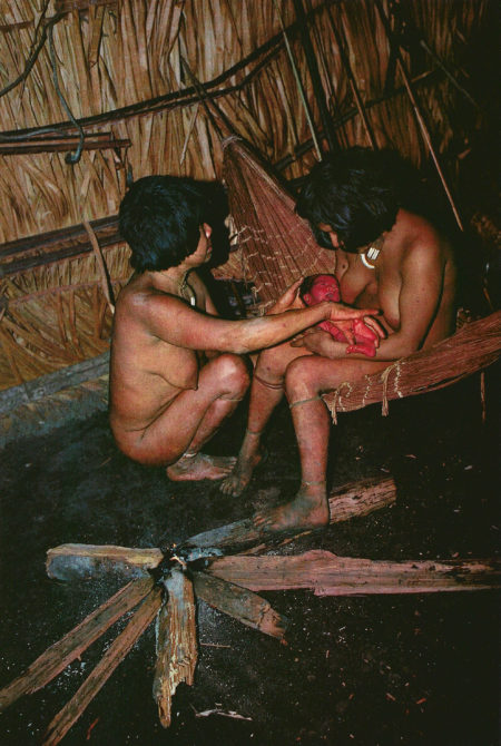 Urueu-Wau-Wau successful birth.