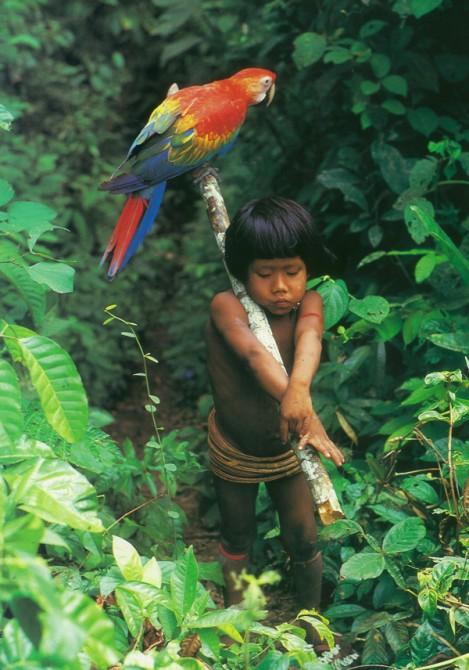 Urueu-Wau-Wau child with scarlet macaw