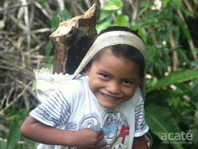 matsés child collecting firewood