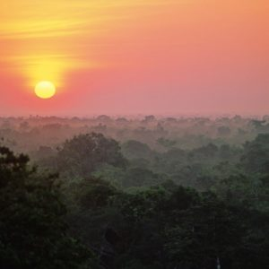Amazon Canopy Sunrise  ©kirkpatrickwildlife.com