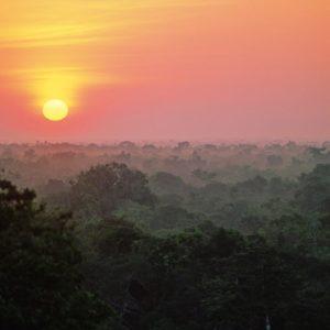 Amazon Canopy Sunrise  ©kirkpatrickwildlife.com