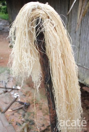 chambira palm strand matsés acaté