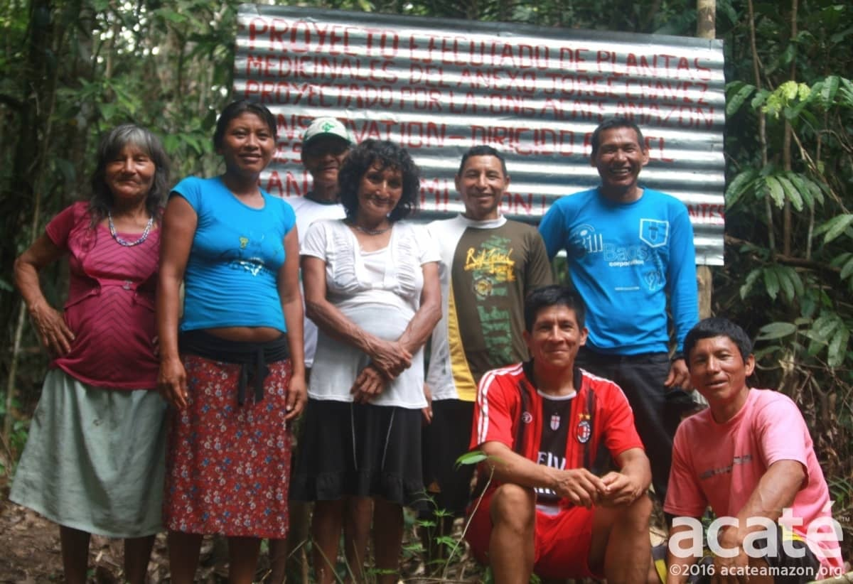 medicinal forest amazon raingforest matsés