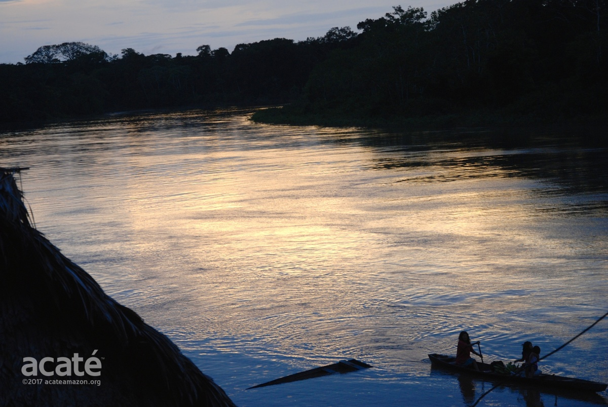 Javari river at Colonia Angamos©Acaté