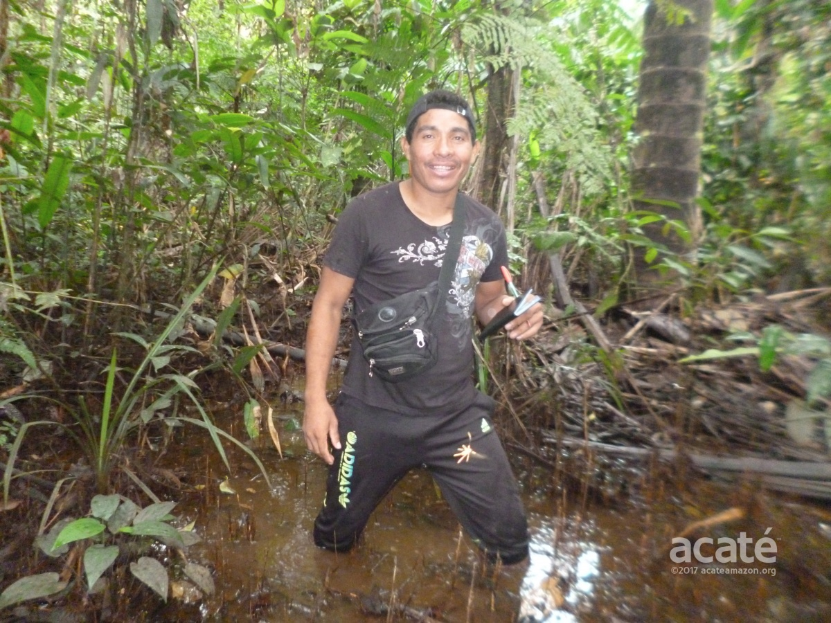 matses mapping chobayacu head waters