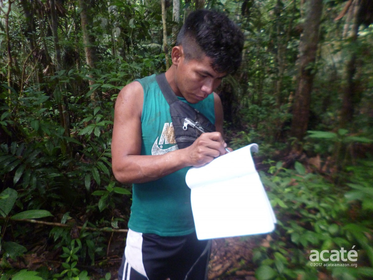 Matsés Indigenous Mapping Initiative
