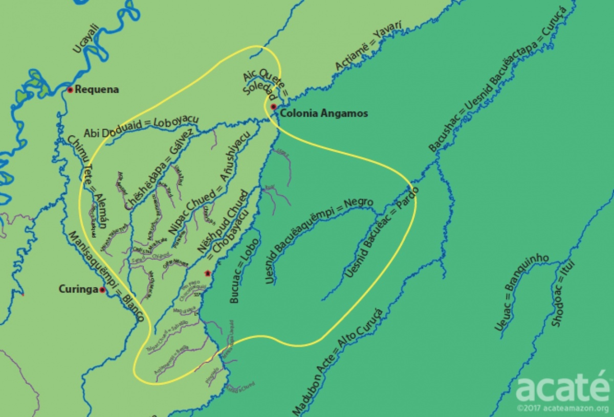 As more Spanish words enter their common speech and land usage patterns shift, ancestral knowledge was on certain trajectory to being irretrievably lost. It is a sad reality today that just a few short decades since the initiation of sustained contact with the outside world, most of the Matsés youth only know the recently given Spanish names of the rivers. The Matsés people's timeless ancestral connection to the lands is at risk of being severed.