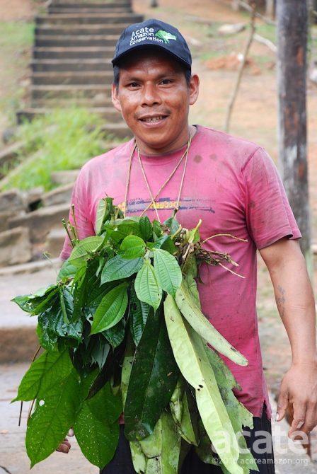 apprentice Buen Peru