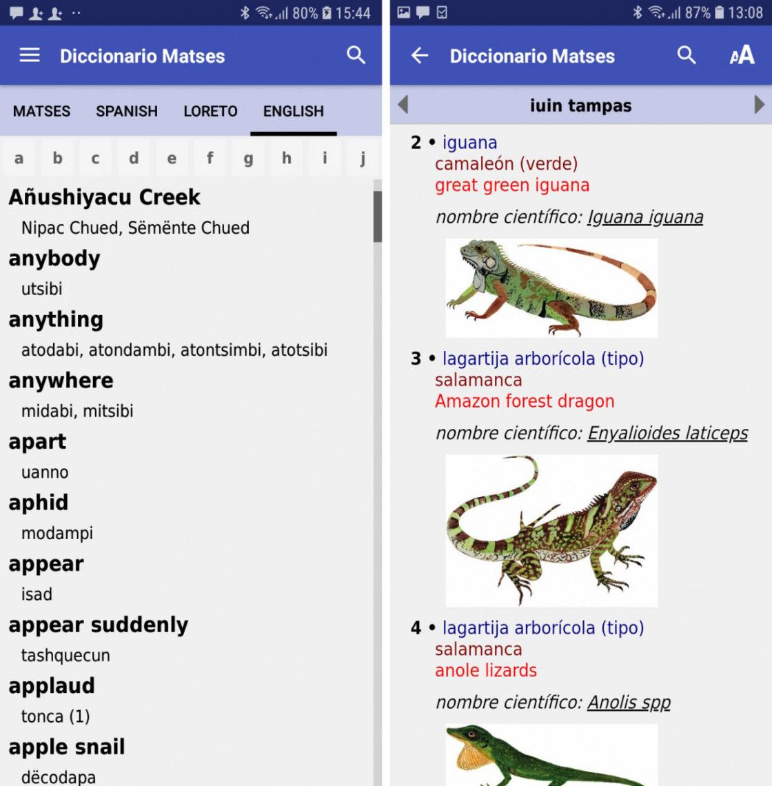 matsés dictionary app